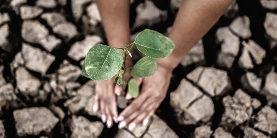 اخلاق اقلیمی، اخلاق قحطی یا اخلاق انقراض؟