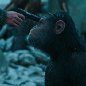 شأن اخلاقی آمیژهھای انسان-میمون
