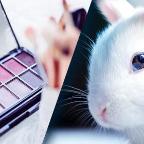 آرایش باشفقت یا تست بیرحمانه روی حیوانات؟