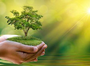 نشست اخلاق زیستمحیطی از دیدگاه اسلام