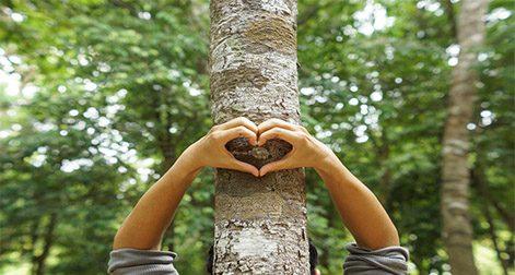 سه چالشِ فلسفه زیستمحیطی